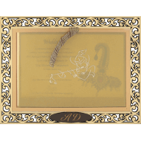 Luxury Wedding Cards - LWC-9001
