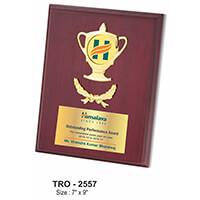 Trophies & Awards - MTC-2557