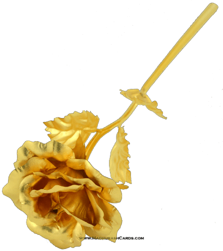 - CG-23_Golden Rose _small - 4