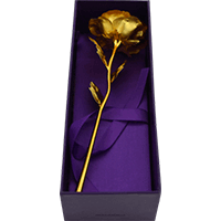 Traditional Gifts - TG-23_Golden Rose _small